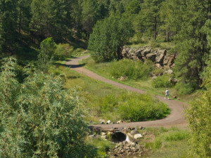 FUTS trail in Sinclair Wash below Willow Bend, Flagstaff