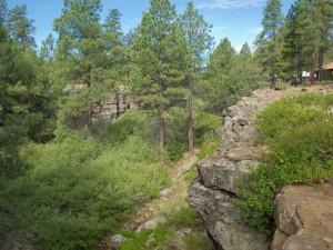Rio de Flag has eroded a narrow basalt canyon at Museum of Northern Arizona, Flagstaff, Arizona