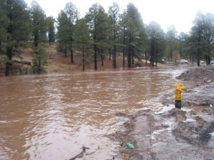 Flooding in 2004-05 in the Rio de Flag below Sinagua Heights (AZ Daily Sun courtesy photo).