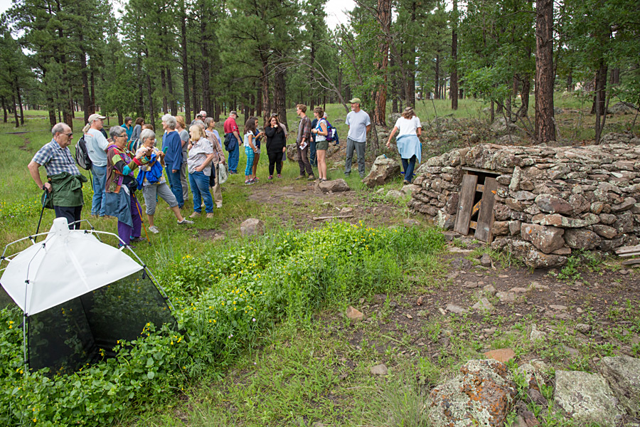 Friends of the Rio de Flag walk to Coyote Springs with Mindy Bell and Gary Alpert, August 4, 2016, Museum of Northern Arizona, Flagstaff, Arizona Photo: Tom Bean