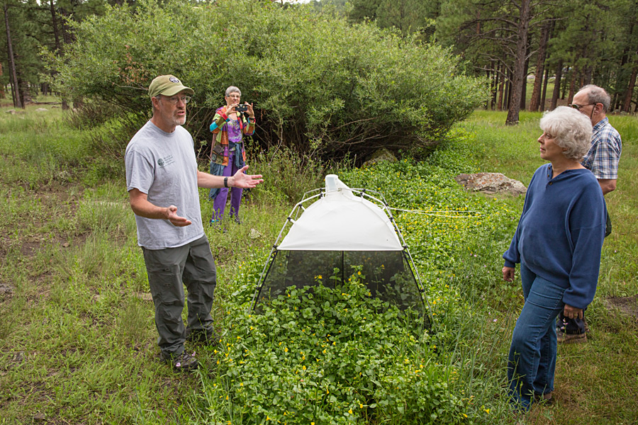 Gary Alpert explains how this insect trap acts as a tool for understanding insect biodiversity. Photo: Tom Bean
