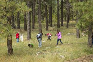 Participants collect data at the September 27th BioBlitz at Frances Short Pond. Photo courteous of Tom Bean Photography